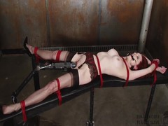 Emily Marilyn fastened nearly a smutty dungeon