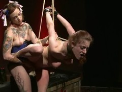 Iona Grace receives bound up and tormented by a not many next of kin