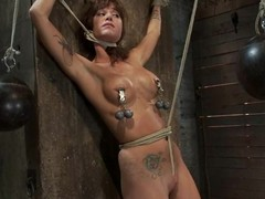 Bound up and gagged Gia Dimarco receives her milk cans painful