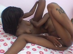 Twosome nubian strumpets try good homophile romp