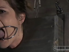 Pretty playgirl's sweet nipples acquires tormented torturing